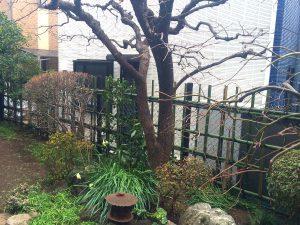施工後:東京都世田谷区/四つ目垣の施工