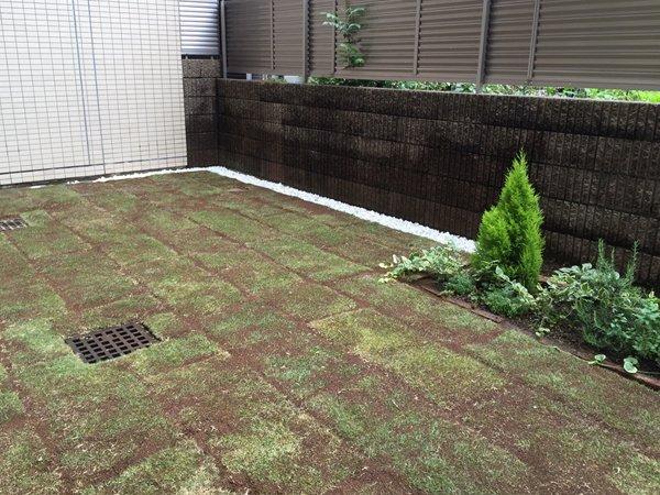 東京都豊島区、人工芝の芝張り
