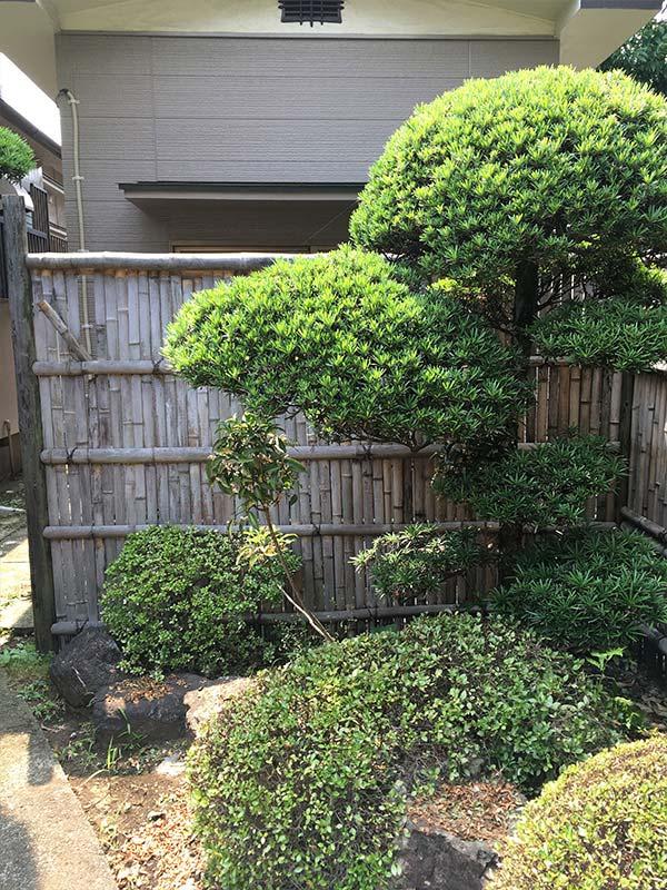 施工前:東京都/古い竹垣の撤去と新竹垣の施工