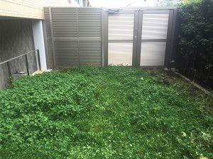 施工前:東京都中野区/人工芝の芝張り
