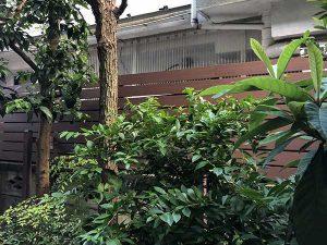 施工後:武蔵野市吉祥寺/板張りフェンスの施工