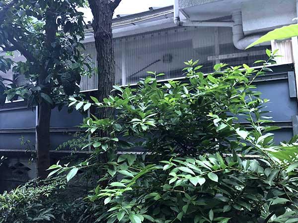 施工前:武蔵野市吉祥寺/板張りフェンスの施工