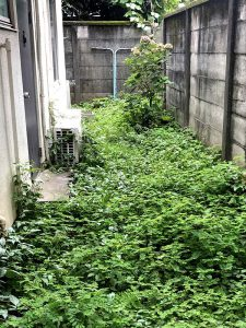 施工前:東京都中野区/除草と防草シートの施工