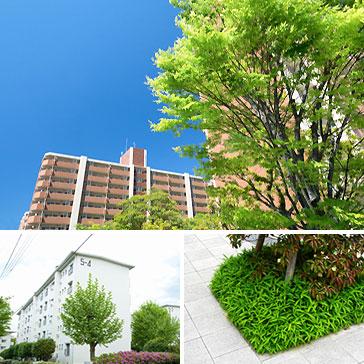 植栽・緑地帯の定期管理